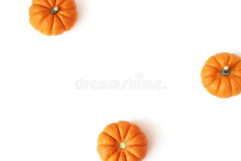 Herbstrahmen gemacht von den kleinen orange Kürbisen lokalisiert auf weißem Tabellenhintergrund Fall-, Halloween- und Danksagungs lizenzfreies stockbild