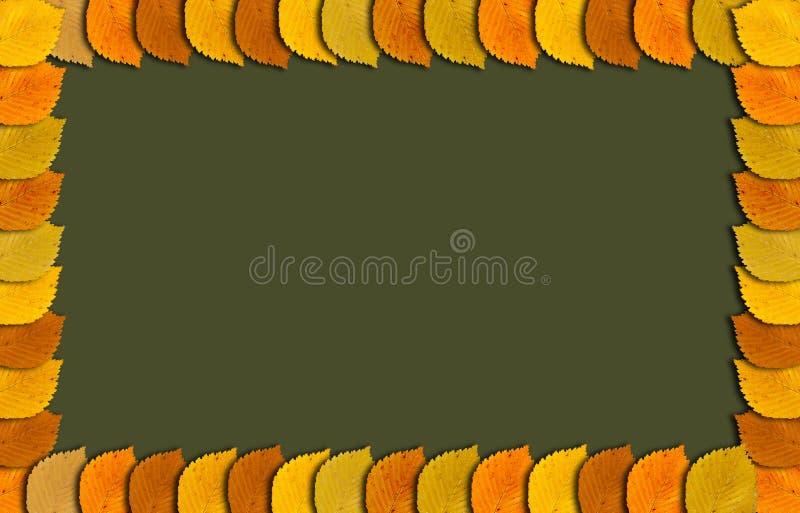 Herbstrahmen mit Herbst färbte Blätter an der Grenze und am copyspace lizenzfreie abbildung