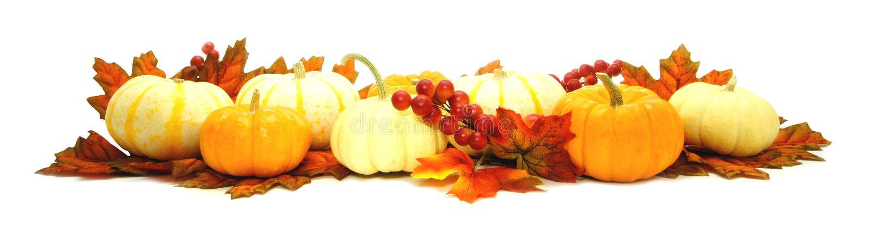 Herbstrand stockfotos