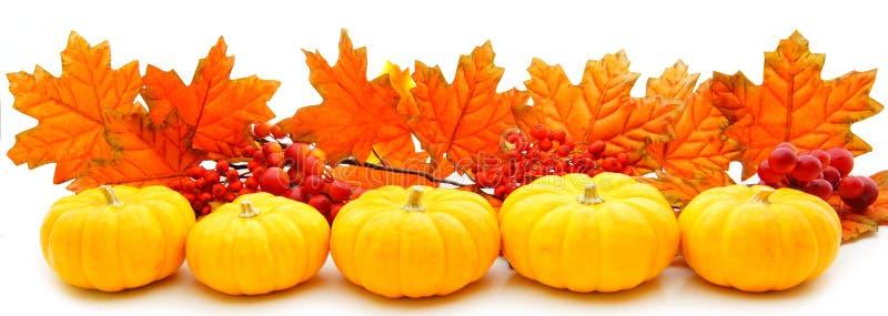 Herbstrand lizenzfreie stockfotos