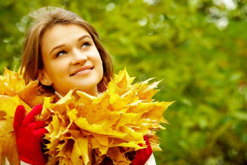 Herbstschönheit stockbild