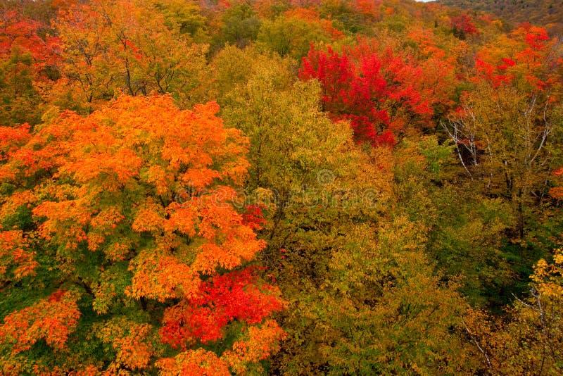 HerbstSpectacular lizenzfreie stockbilder