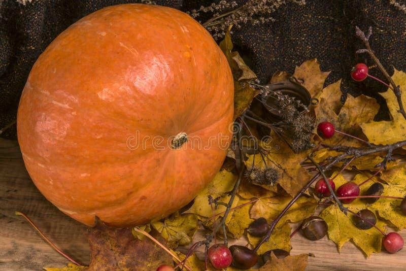 Herbststillleben, Kürbis, gelbe Blätter, Kastanien stockfoto