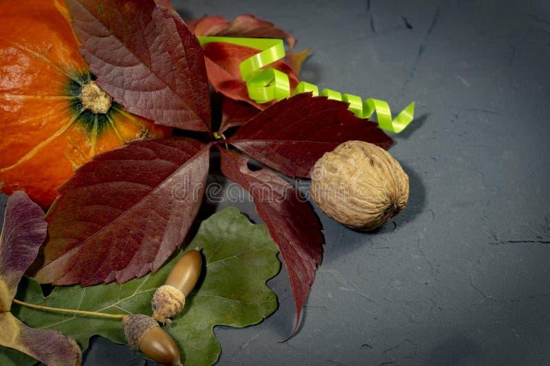 Herbststillleben mit Blättern, Kürbis und Nüssen stockfoto