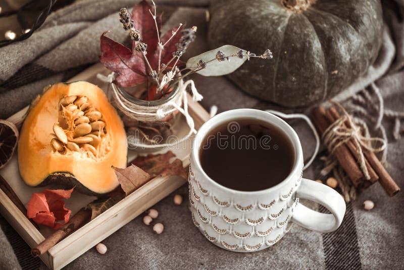 Herbststillleben mit Tasse Tee lizenzfreie stockfotos