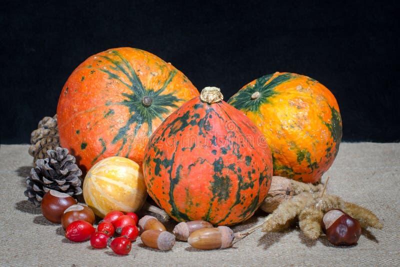 Herbststillleben mit vier Kürbisen auf Leinwandkiefern-Kegel chestn lizenzfreie stockfotografie