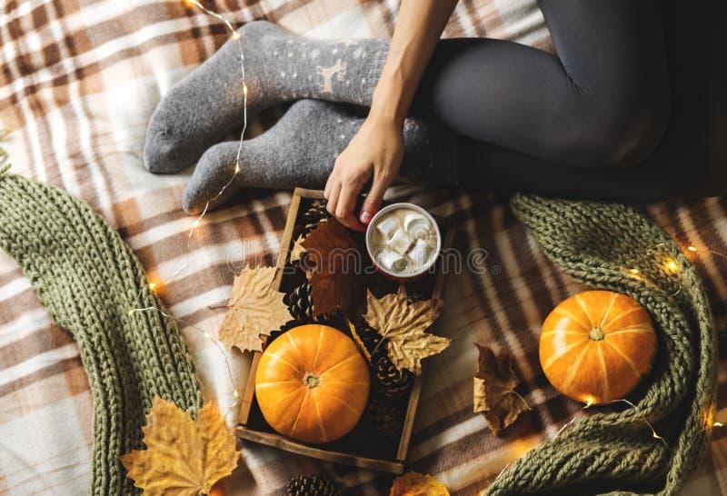 Herbststillleben vom Behälter voll des Kürbises, der Blätter, der Kegel, des Schals, des Bechers Kakaos, des Kaffees oder der hei lizenzfreie stockfotografie