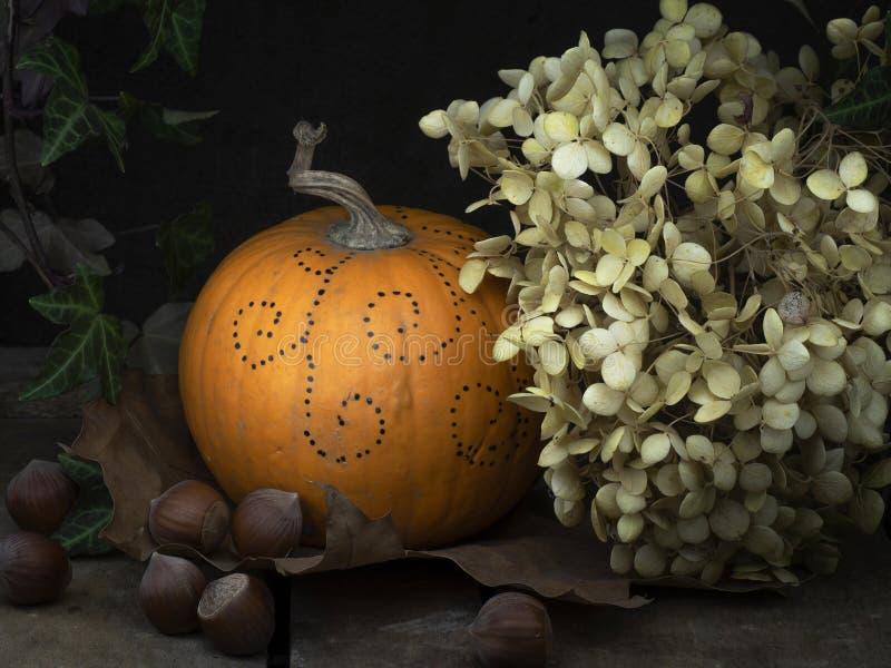 Herbststilllebendetail Kleiner verzierter Kürbis, Kürbis mit getrockneten Hortensieblumen, Efeu und Nüsse Heller Anstrich stockfotografie