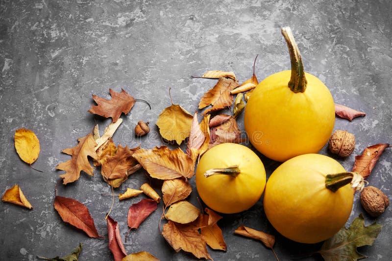 Herbststilllebenkürbis mit gelben Blättern lizenzfreie stockfotografie