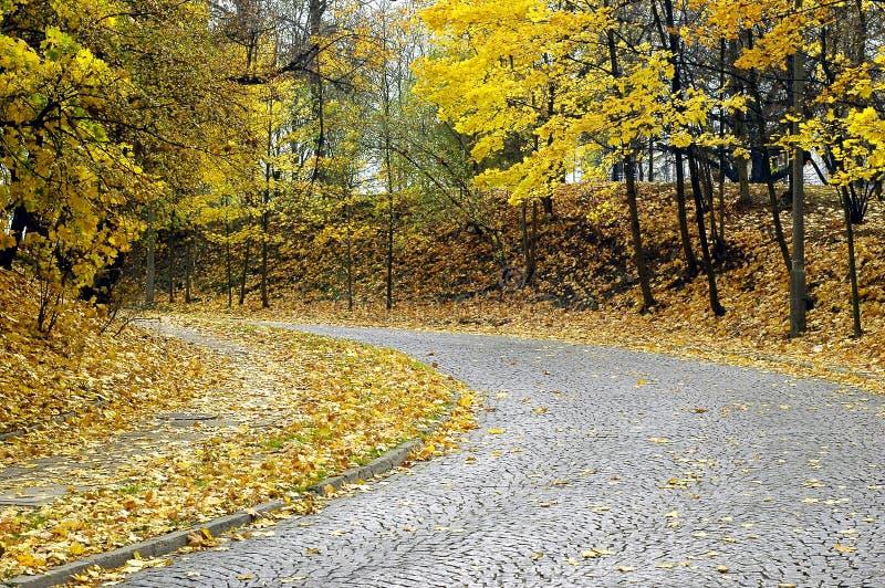 Herbststraße lizenzfreie stockfotografie