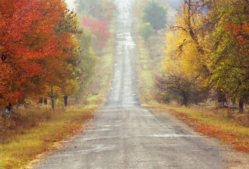 Herbststraße stockbild