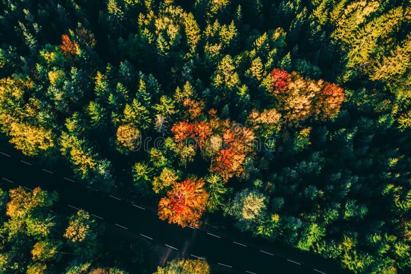 Herbststraßen - erstaunliche Gesamtlänge lizenzfreies stockfoto