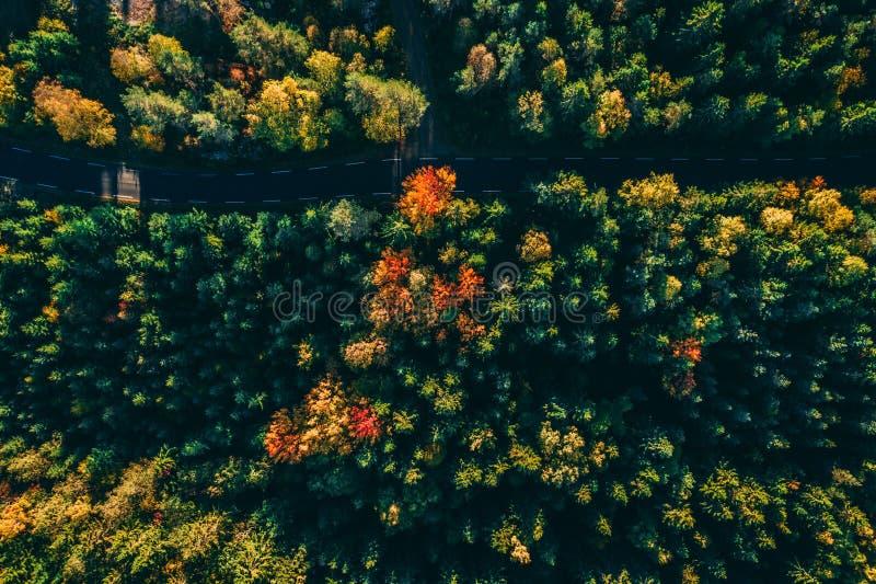 Herbststraßen - erstaunliche Gesamtlänge lizenzfreies stockbild