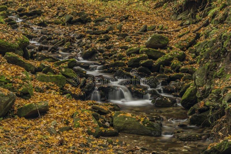 Herbsttag auf Fluss Cista in Krkonose-Bergen lizenzfreie stockfotografie