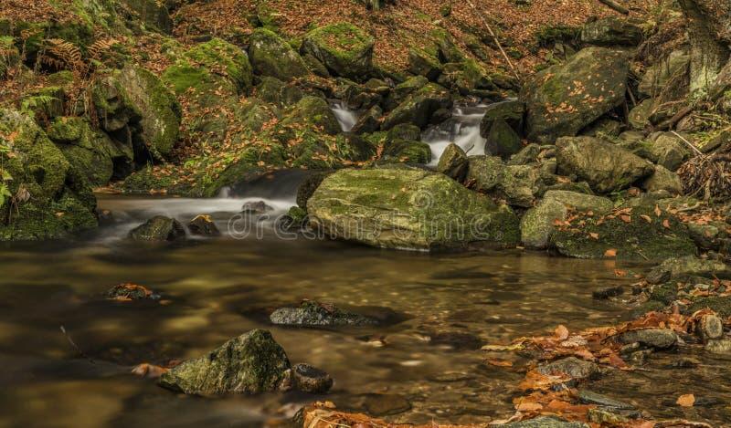 Herbsttag auf Fluss Cista in Krkonose-Bergen lizenzfreie stockbilder