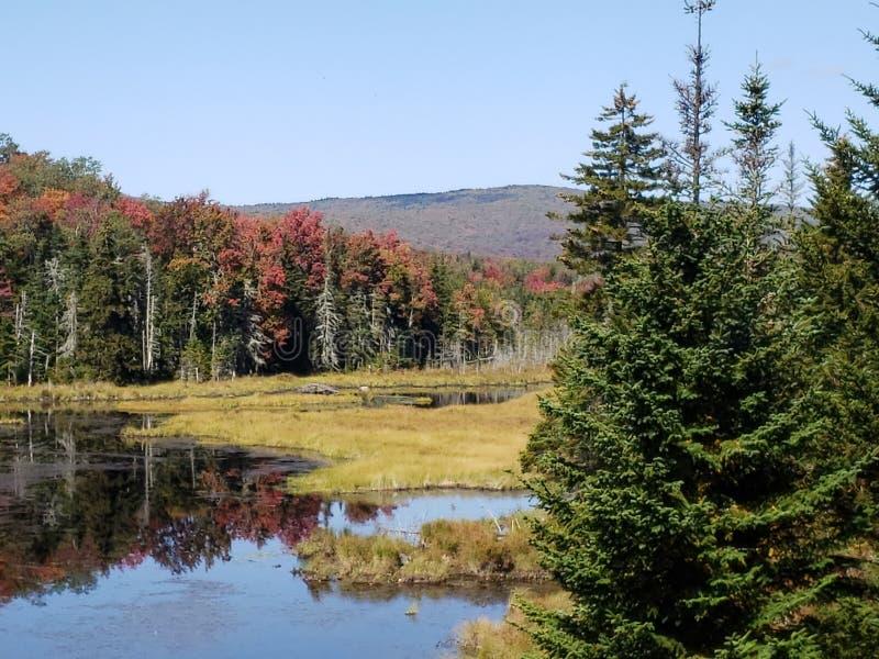 Herbsttag Vermont stockfoto