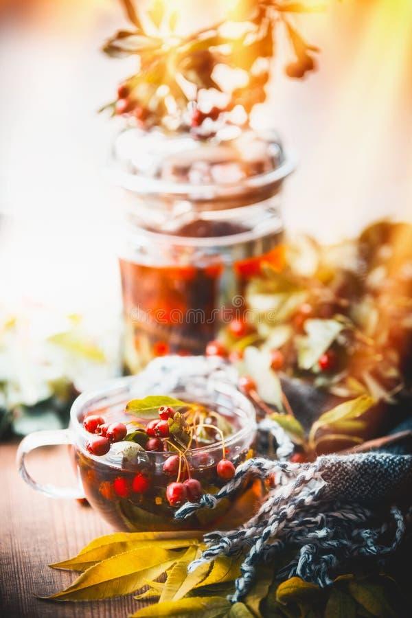 Herbsttee mit roten Beeren, Teetopf, Blättern und Schal stockbilder