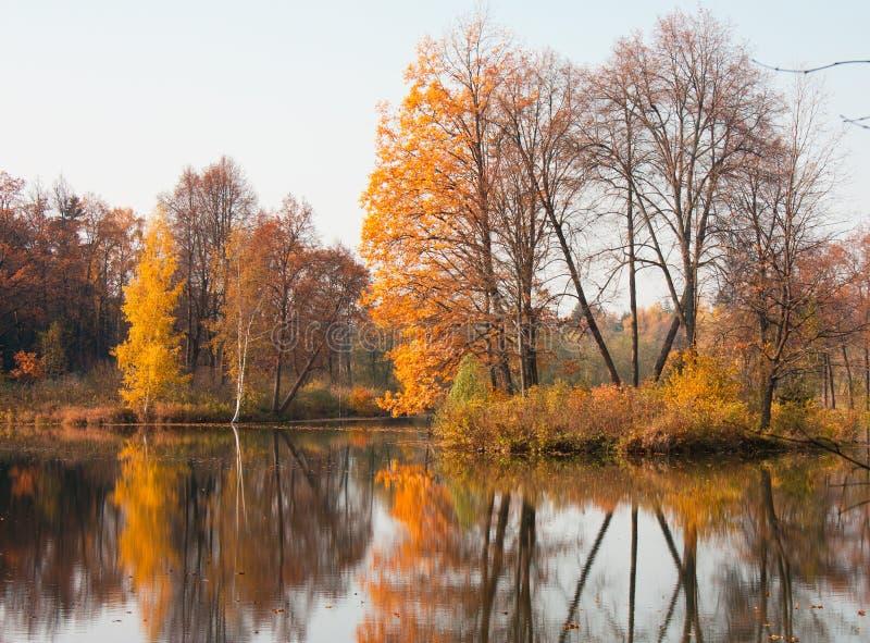 Herbstteich Lizenzfreies Stockbild