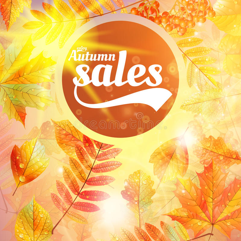 Herbstverkaufs-Fallgelb lässt Naturhintergrund lizenzfreie abbildung