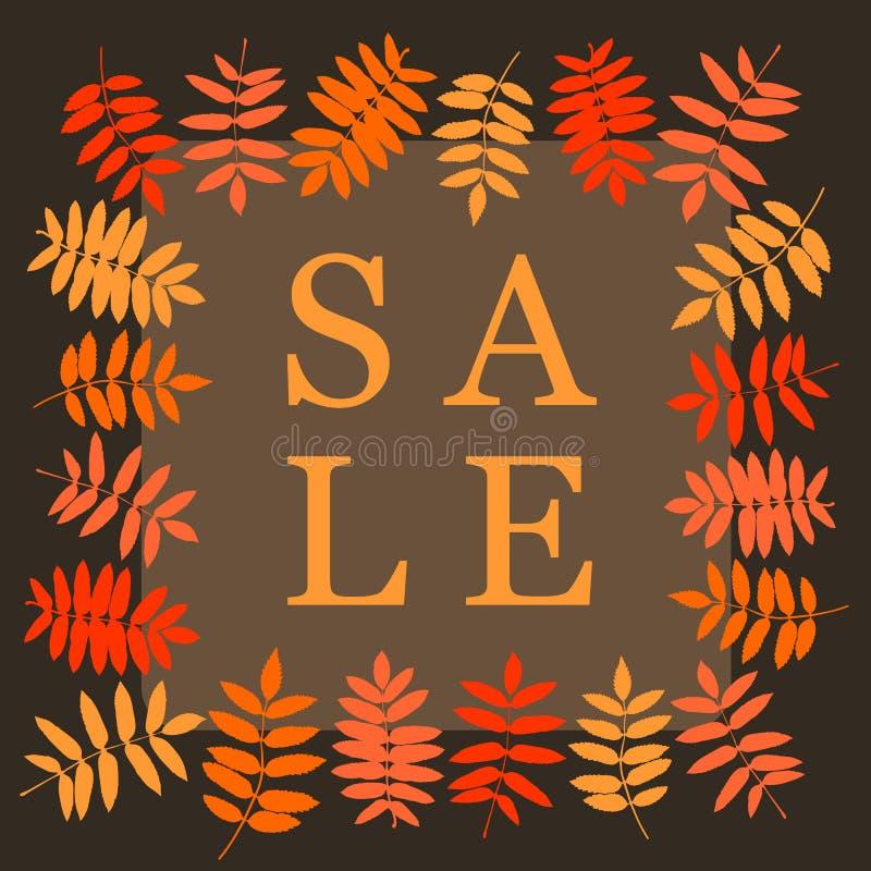 Herbstverkaufs-Quadratfahne mit Ebereschenblatt Rahmen von Blättern stock abbildung