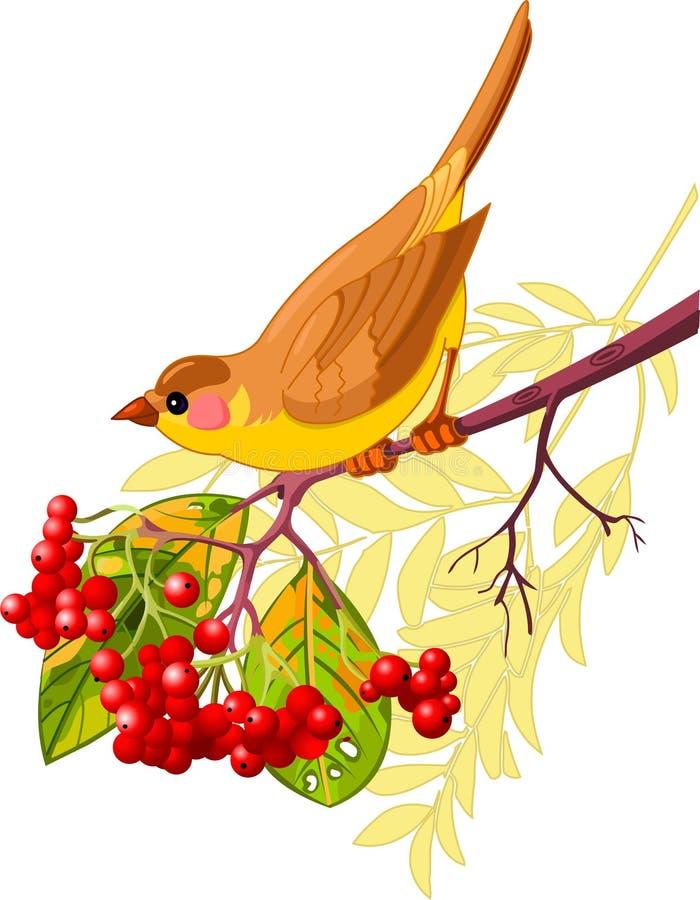 Herbstvogel lizenzfreie abbildung
