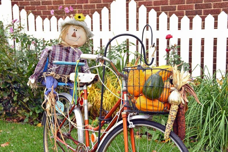 Herbstvogelscheuche auf Fahrrad stockbild
