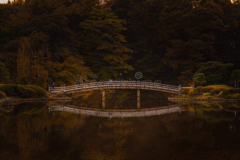 Herbstwald mit einer Brücke über einem See stockfoto