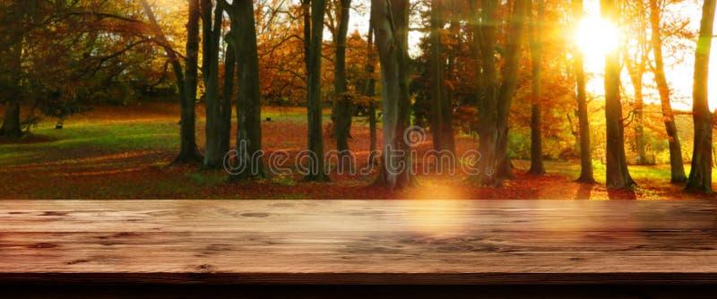 Herbstwald mit leerem Holztisch lizenzfreie stockfotos