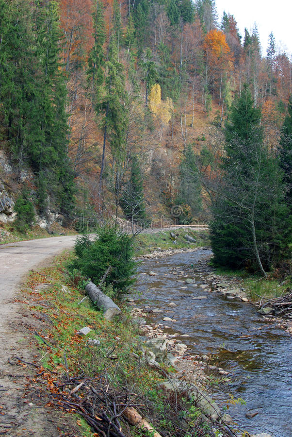 Herbstwald und -fluß lizenzfreie stockfotos