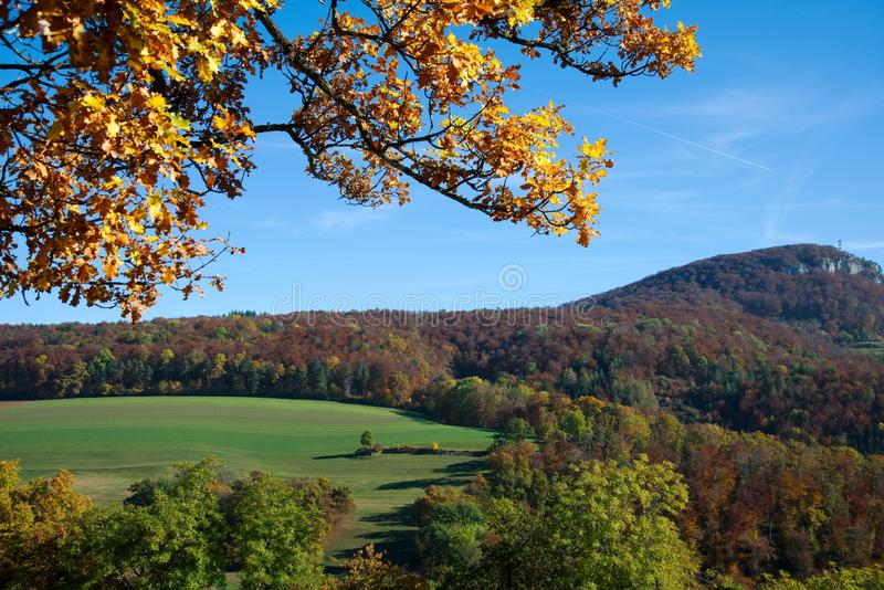 Herbstwaldansicht vom Dorneck-Schloss lizenzfreies stockbild