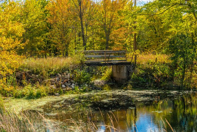 Herbstwaldreflexionslandschaft Wald, Teich u. Fußbrücke lizenzfreie stockfotos