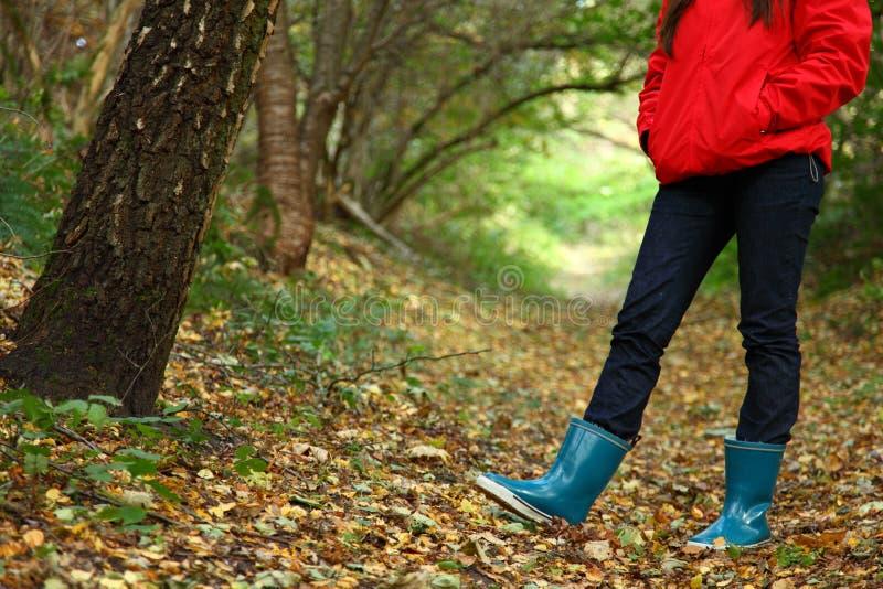 Herbstwaldweg lizenzfreie stockfotos
