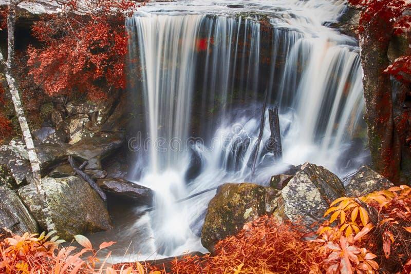 Herbstwasserfall im tiefen Wald stockfotos