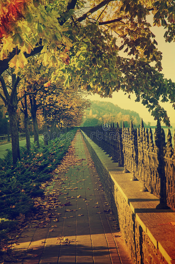 Herbstweinlese Quay stockfotos