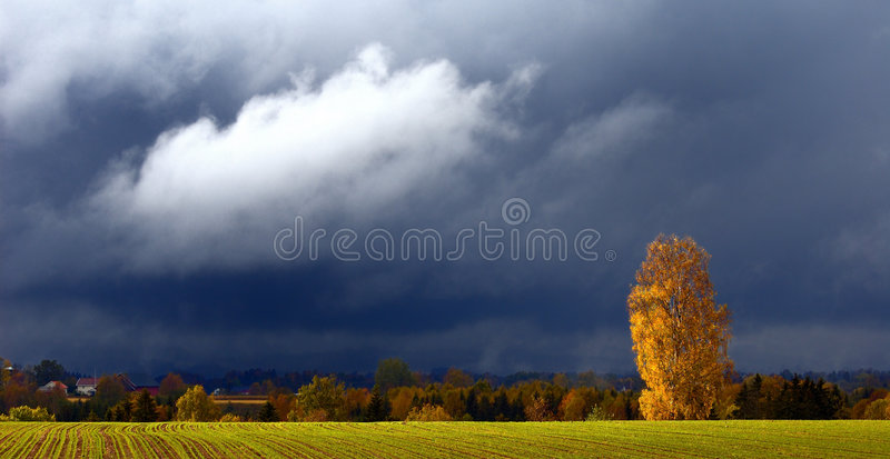 Herbstwetter lizenzfreie stockfotografie