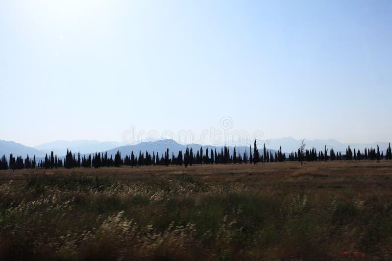 Herbstwiesen mit Bergen am Horizont lizenzfreie stockbilder