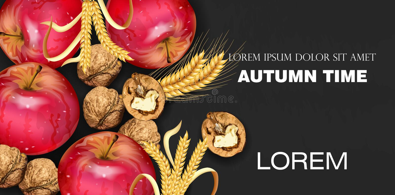 Herbstzeitfahne mit Äpfeln und Walnüsse Vector realistisches Ausführliches Design 3d Dunkle Hintergründe stock abbildung