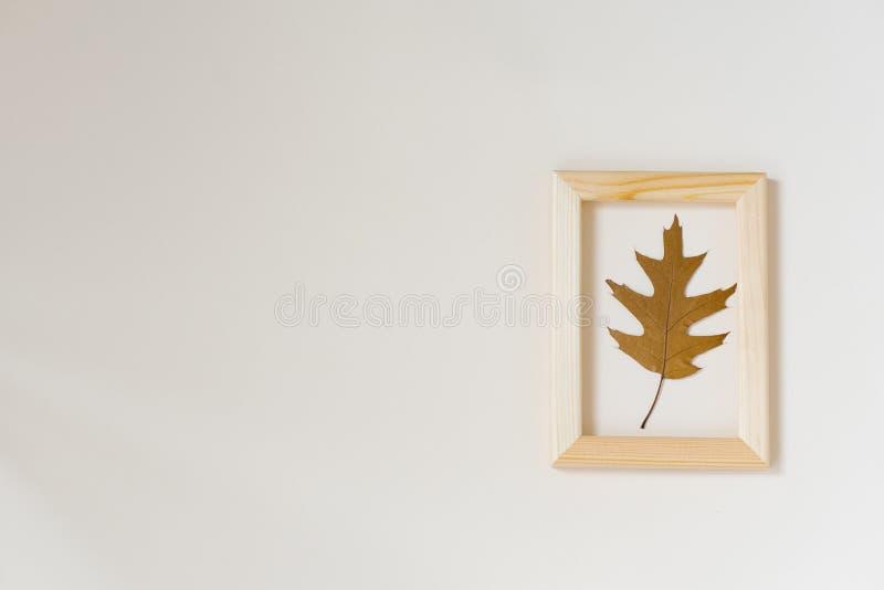 Herbstzusammensetzung: gefallenes Herbstblatt der braunen Eiche in einem Holzrahmen auf einem beige Hintergrund Minimalistic-Eben stockfotos