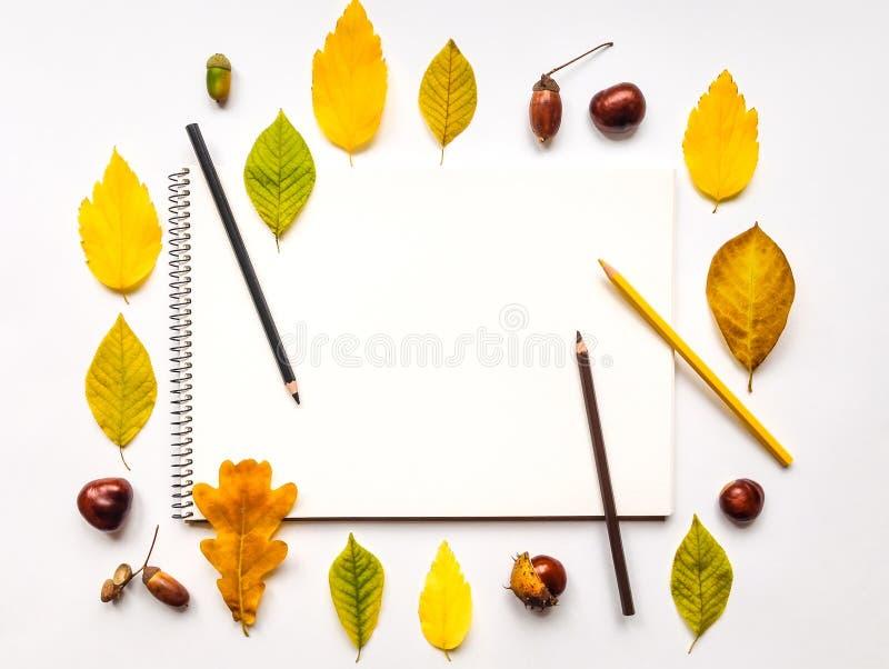 Herbstzusammensetzung mit dem Sketchbook und Bleistiften, verziert mit Gelb- und Grünblättern Flache Lage, Draufsicht lizenzfreie stockfotografie