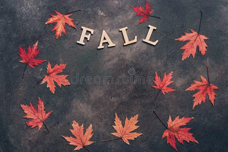 Herbstzusammensetzung von roten Blättern des Ahorns auf einem dunklen rustikalen Hintergrund und dem Wortfall von den hölzernen B lizenzfreie stockfotos
