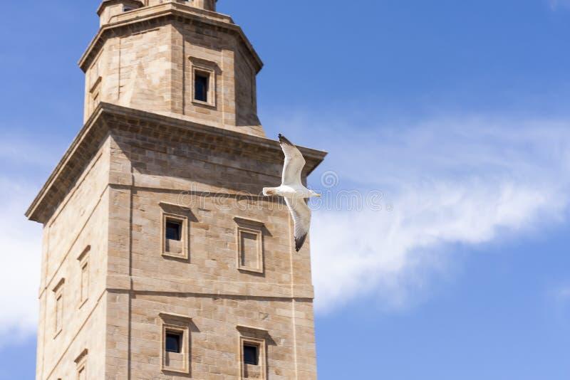 Hercules Tower imagens de stock royalty free