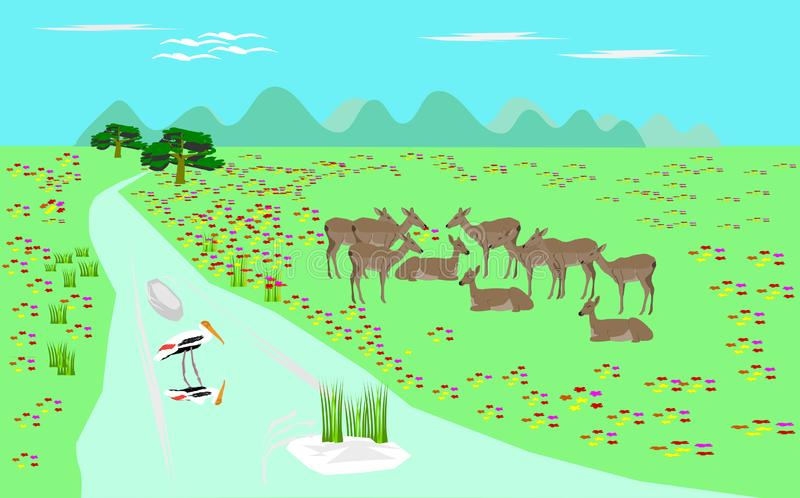 Herd of antelope on green pasture streams. vector illustration