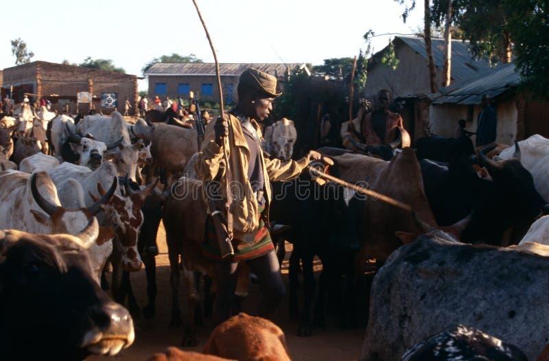 Herders βοοειδών Karamojong, Ουγκάντα στοκ φωτογραφία
