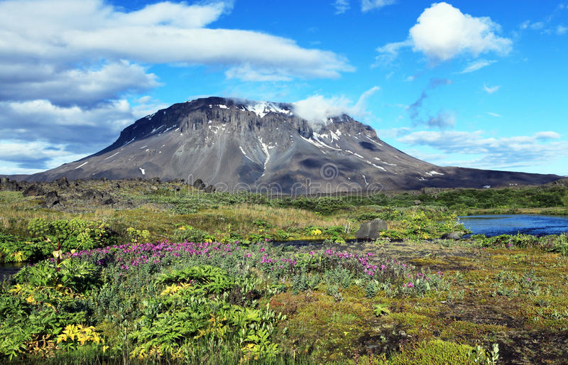 Herdubreid Iceland zdjęcia stock