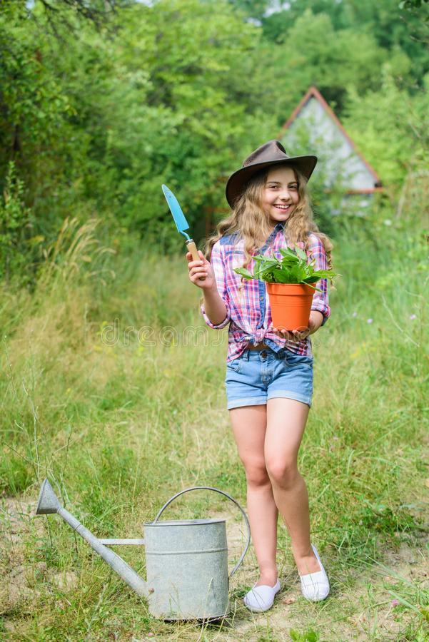 Here i am. hellow summer. small girl planting with shovel. earth day. environment ecology. green nature protection. Small girl farmer care about plant in pot stock images