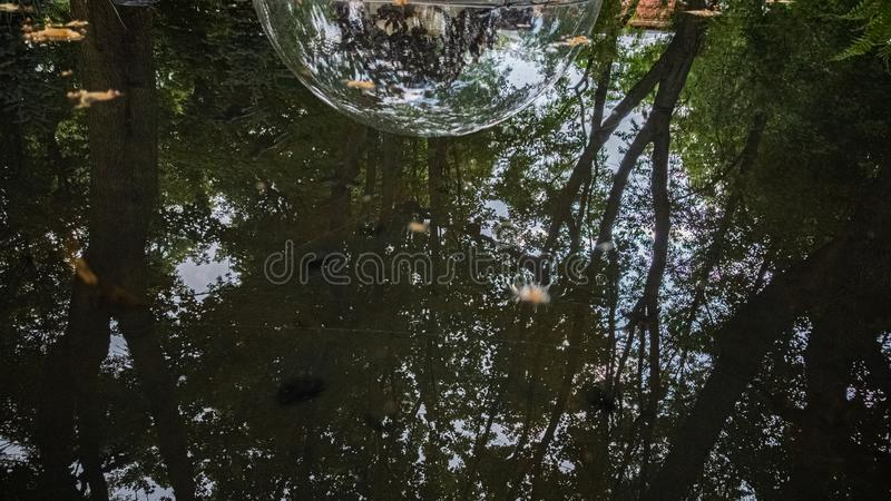 Strange bubble on the water stock photos