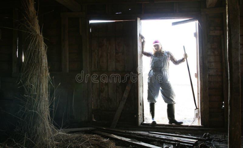 Hereinkommender dunkler Stall stockfotos