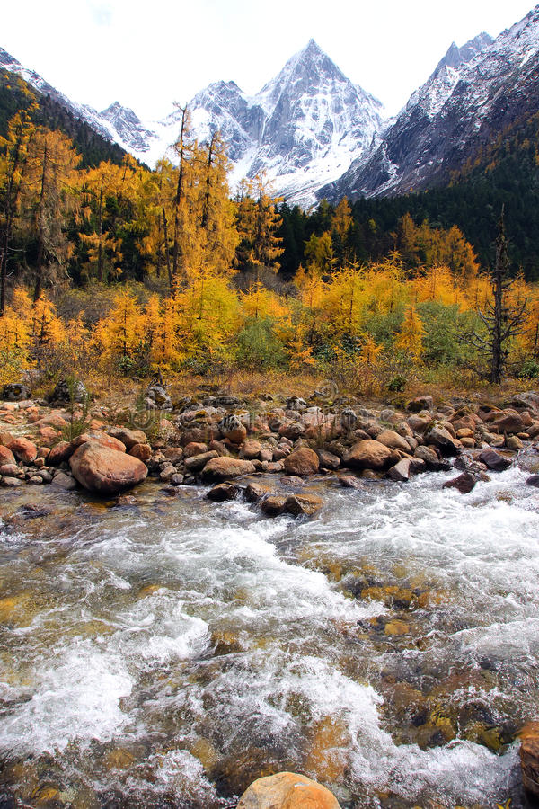 Herfst berglandschap stock afbeelding