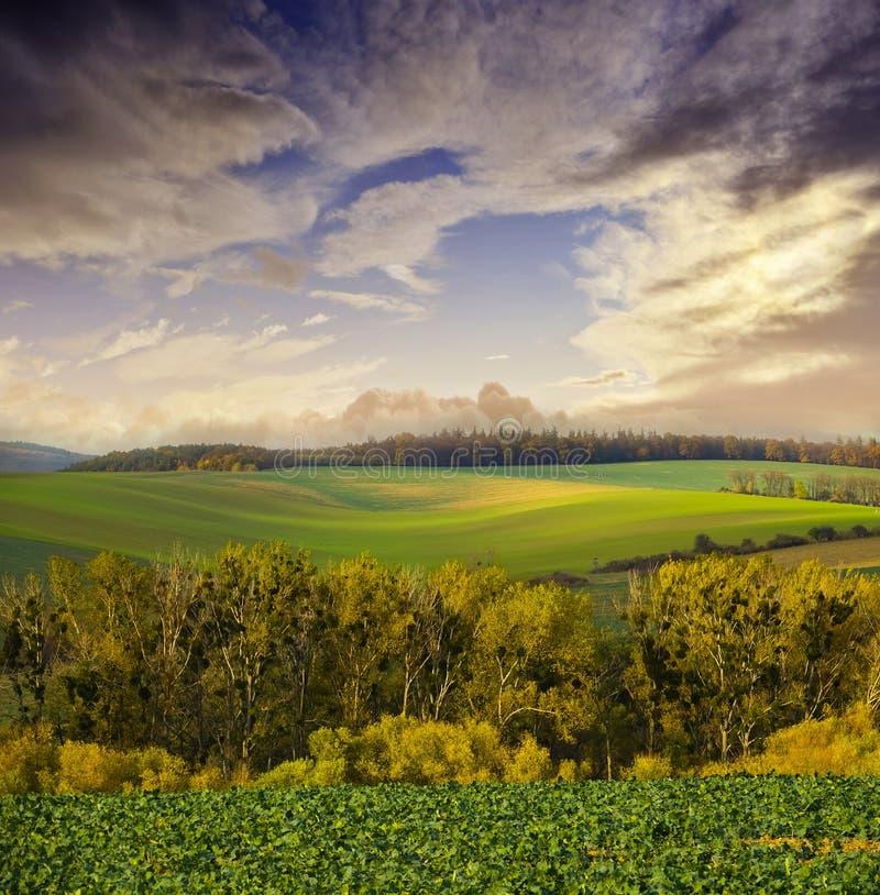 Herfst landschap royalty-vrije stock afbeelding