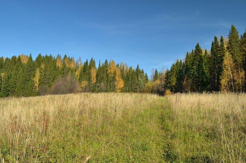 Herfst van de de heuvelsrivier van de hemel de bosweide, daling stock afbeelding